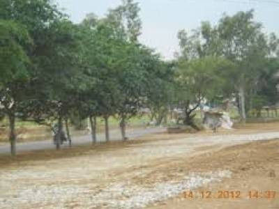 130 ACRE LAND IN NEW CHANDIGARH